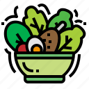 healthy, lettuce, salad, vagetable icon