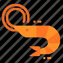 animal, food, sea, seafood, shrimp icon