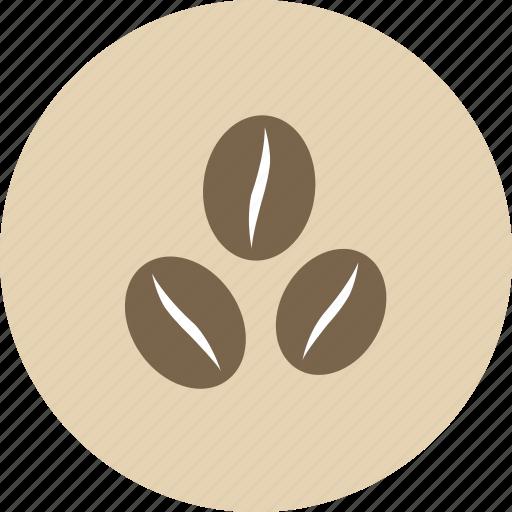 barista, beans, caffeine, coffee, drink, espresso, seed icon