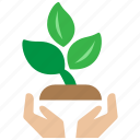 agricultural, agriculture, farm, insurance, plant, seed, tree icon