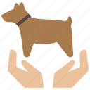 animal, care, dog, pet icon