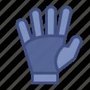 catch, football, gloves, goalkeeper, safe, soccer, sport