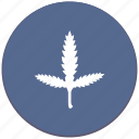 branch, canabis, leaf, plant icon