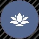calendula, garden, home, plant, pot icon