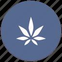 canabis, drug, leaf, plant