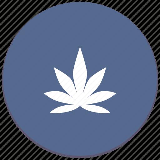 canabis, drug, leaf, tabacco icon
