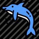 dolphin, marine, sea, wild, life