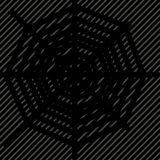 cobweb, spider, tarantula, web icon