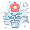 flower, pot, home