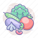 cabbage, tomato, vegetables icon