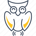 bird, owl, school icon