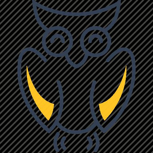 bird, owl, school icon