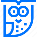 education, learning, owl, school, sign, study icon