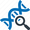 dna, search, find, science icon