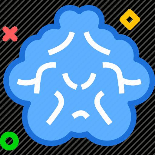 brain, cloud, human, organ, organism icon