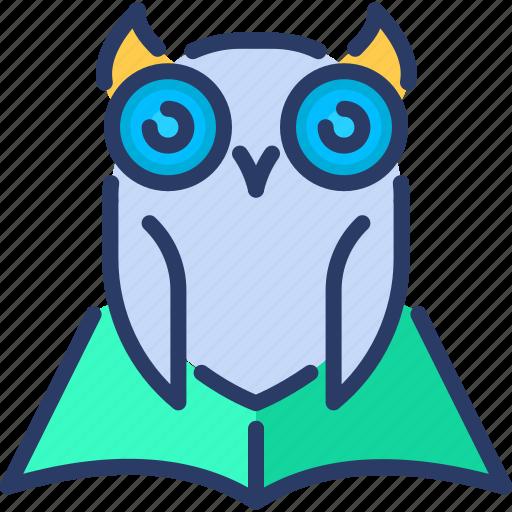 bird, education, knowledge, owl, wisdom icon