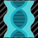 dna, education, genes, genetic, medical, science, study