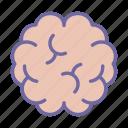 science, brain, intelligence, mind, human, medical