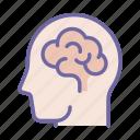 education, intelligence, mind, brain, human, science