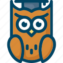 bird, education, hat, knowledge, owl, smart