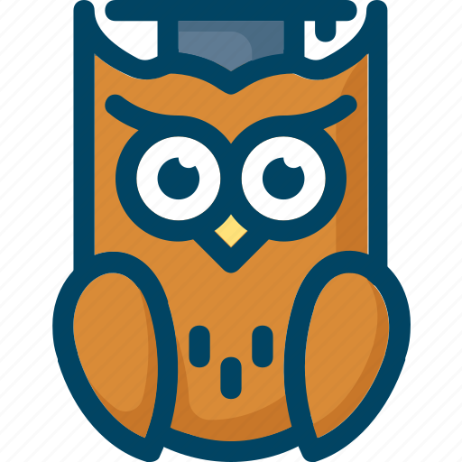bird, education, hat, knowledge, owl, smart icon