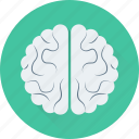 intelligence, creative, brainstorming, organ, brain icon