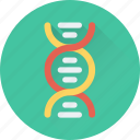 biology, dna, genetics, helix, science icon