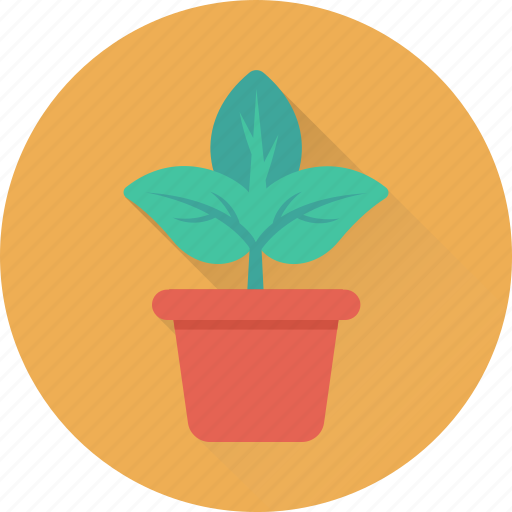 flower, greenery, nature, plant, pot icon