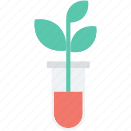 botany experiment, flask, lab experiment, plant, plant in jar icon