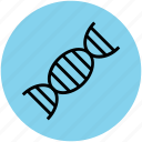 dna, dna helix, dna molecules, dna strand, dna structure, gene, genetic icon