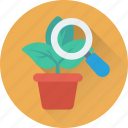 botany, experiment, leaf, magnifying, plant icon