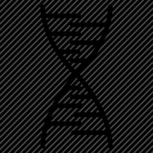 chain, dna, molecule, strand, structure icon