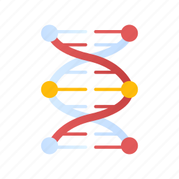 biology, chromosome, dna, gene, genetic, molecule, science icon
