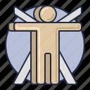 anthropology, body, man, vitruvian icon