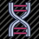 biology, dna, genetics