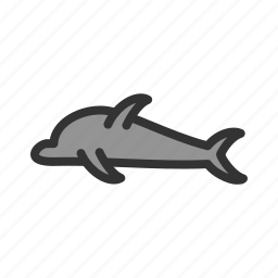 animal, dolphin, fish, mammal, marine, nature, ocean icon