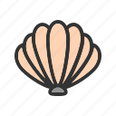 beach, marine, nature, sea, seashell, shell, shells icon