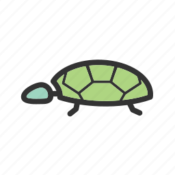 green, nature, sea, shell, tortoise, turtle, wildlife icon
