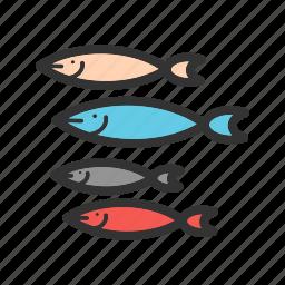 diving, fish, nature, sea, shark, silver, small icon