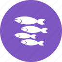 diving, fish, nature, sea, shark, silver, small icon
