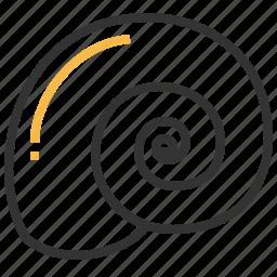 animal, seafood, shell, spiral icon