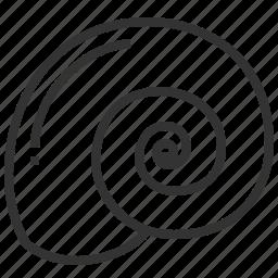 food, seafood, shell, spiral icon