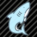 attack, bite, danger, fin, ocean, sealife, shark icon