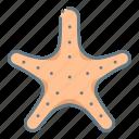 animal, beach, sea, sealife, starfish, underwater icon