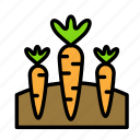 carrots, relaxation, seasonal, vacation icon
