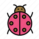 ladybug, relaxation, seasonal, vacation icon