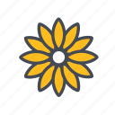 chrysanthemum, flower, garden, nature icon