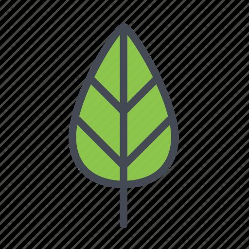 autumn, eco, garden, leaf, leaves, nature icon
