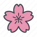 cherry blossom, flower, sakura, spring icon