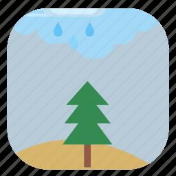 field, fir, nature, season, tree icon